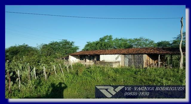 VR-Belíssima Fazenda 130ha com Estrutura, Localização Privilegiada, Valor Super Atrativo - Foto 12