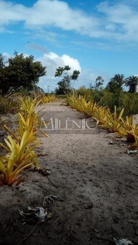 Terreno à venda em Taipu de fora, Maraú cod:57863649 - Foto 14