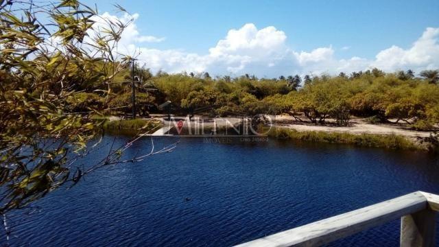 Terreno à venda em Taipu de fora, Maraú cod:57863649 - Foto 16
