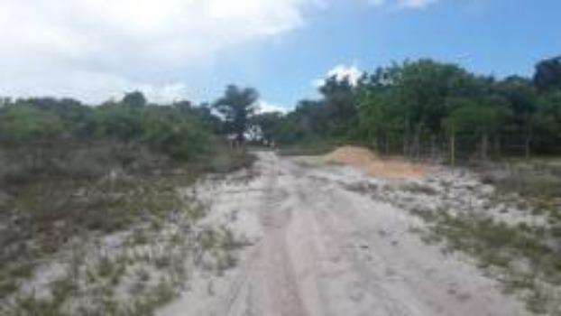 Lotes Taipu de Fora - Península de Maraú - Bahia - Foto 5