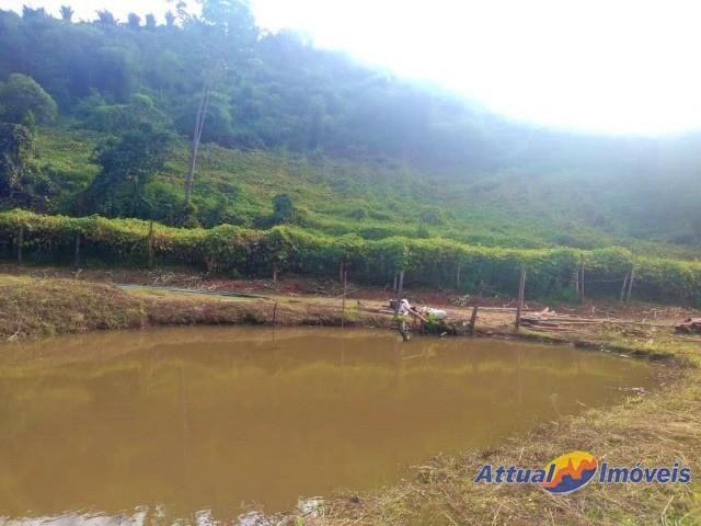 Sítio com excelente área, 3 nascentes, muita água! Próximo ao centro à venda em São José d - Foto 6