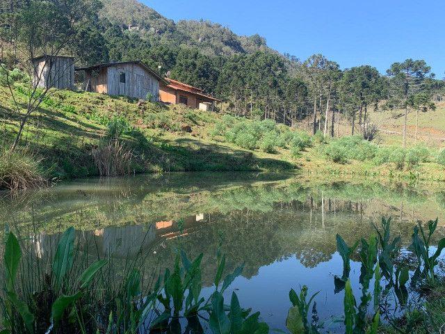 Chácara em Urubici / terrenos em Urubici - Foto 4