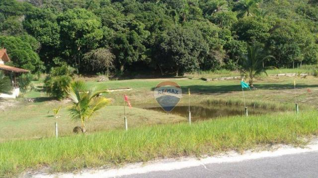 Terreno residencial à venda, praia de mogiquiçaba, belmonte. - Foto 8