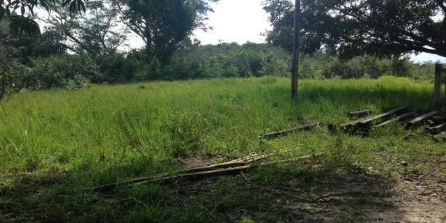 Morros - Ma: Vendo uma Excelente Propriedade Rural - Foto 2