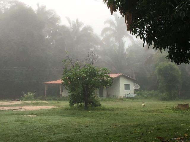 Fazenda com 980 hectares no município de Palmeirais-PI, 95 km de Teresina - Foto 2