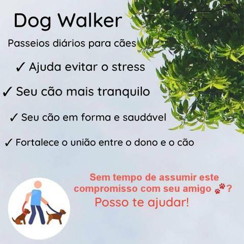 Dog Walker/ Passeador de cães ?