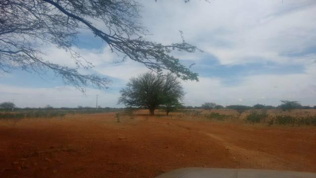Vendo terreno em Recife de Jussara- Bahia. Contato 11- * - Foto 11