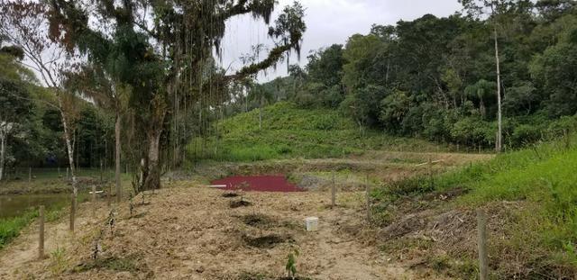 Terreno - Sitio - Chácara - Foto 3