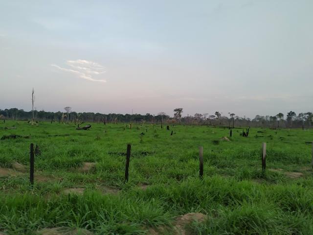 VENDE -SE Terra na Samuel candeias do jamari - Foto 4