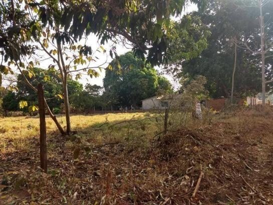 Chácara à venda, 4000 m² por r$ 230.000 - san diego - goianira/go - Foto 7