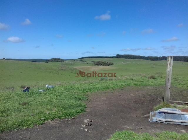 Vendo este excelente e magnífico campo, um verdadeiro paraíso, com a área de 150 hectares - Foto 4