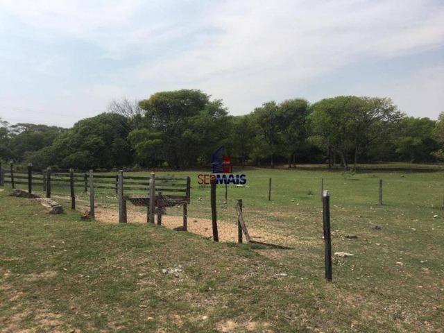Excelente Fazenda a venda em Corumbá-MS - Foto 7