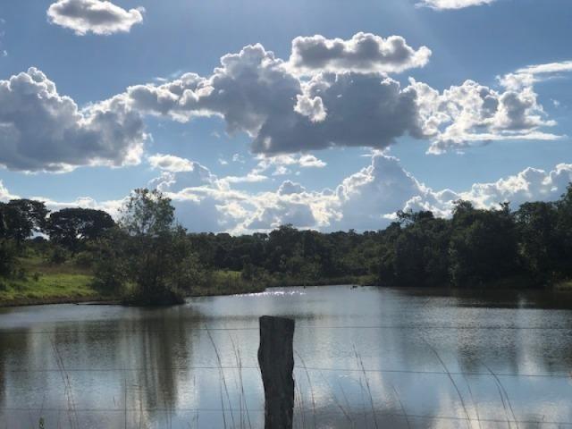 Oportunidade! 58 Alq. em Morrinhos-GO. Boa de Água! - Foto 2