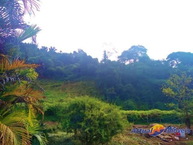 Sítio com excelente área, 3 nascentes, muita água! Próximo ao centro à venda em São José d - Foto 11