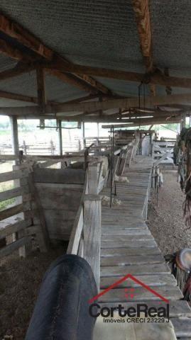 Chácara à venda em Centro, Corumbá cod:8013 - Foto 9