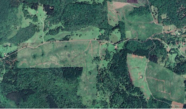 Fazenda com Reflorestamento na Serra Catarinense - Foto 2