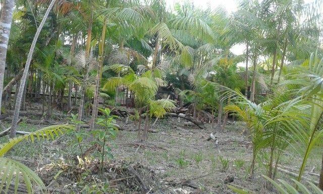 Vende-se um terreno na ilha de Santana valor valor negociar - Foto 4