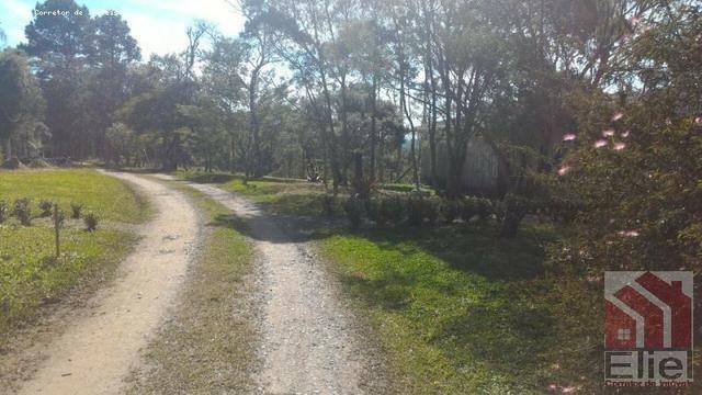 Sitio Lindo e Plano, Aceita Casa no Litoral - Foto 14