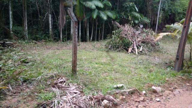 Vendo terreno no gasparinho R$ 42.000,00 - Foto 4