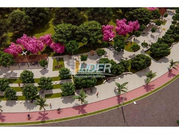 Terreno à venda com 0 dormitórios em Loteamento portal do vale ii, Uberlândia cod:24096 - Foto 11