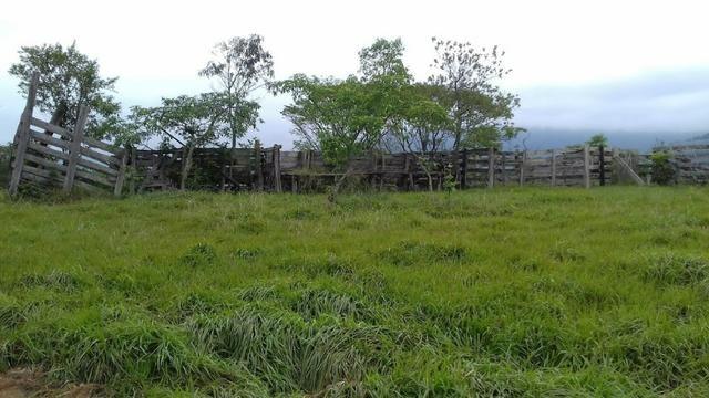 Fazenda 15 alqueires - Foto 5