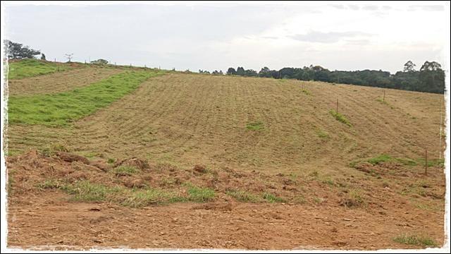Vendo meu terreno em Ibiúna - Foto 2