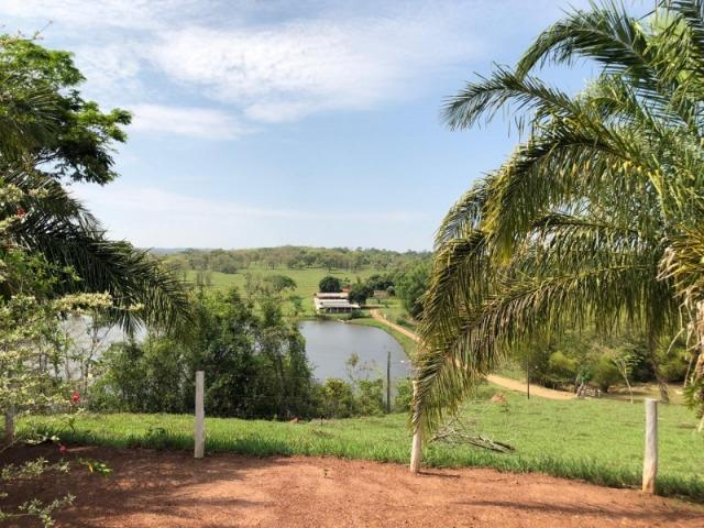 625 Alq. na Cultura | Ipameri-Goiás. Abaixo do Preço! - Foto 9