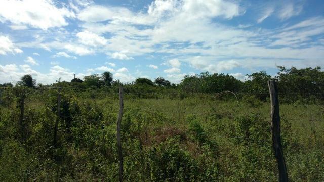 Granja 7 hectares, Casa simples,próximo a RN 064, Cercada - Foto 2