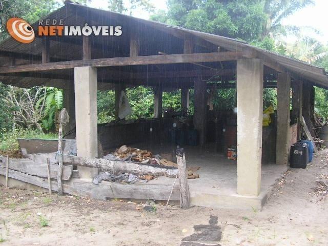 Fazenda com 52,5 Hectares com Fábrica de Azeite de Dendê à Venda na Ilha de Boipeba 402074 - Foto 15