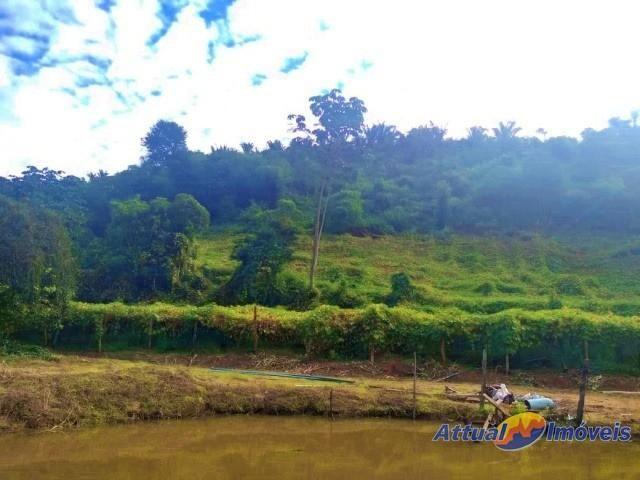 Sítio com excelente área, 3 nascentes, muita água! Próximo ao centro à venda em São José d - Foto 19