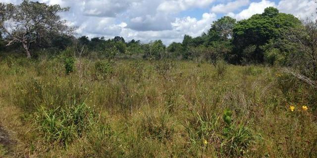 Morros - Ma: Vendo uma Excelente Propriedade Rural - Foto 12