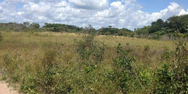 Morros - Ma: Vendo uma Excelente Propriedade Rural - Foto 13