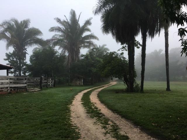 Fazenda com 980 hectares no município de Palmeirais-PI, 95 km de Teresina