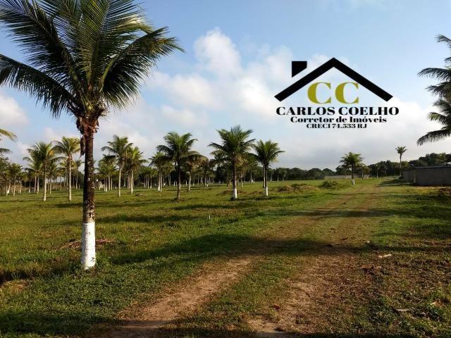 Gd cód 138 Imperdível Promoção Terrenos Prontos para Construção!!! - Foto 8