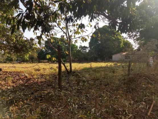 Chácara à venda, 4000 m² por r$ 230.000 - san diego - goianira/go - Foto 6