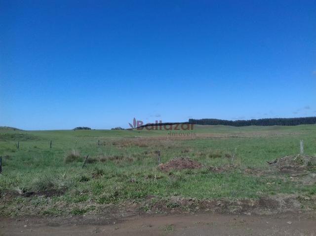 Vendo este excelente e magnífico campo, um verdadeiro paraíso, com a área de 150 hectares - Foto 10