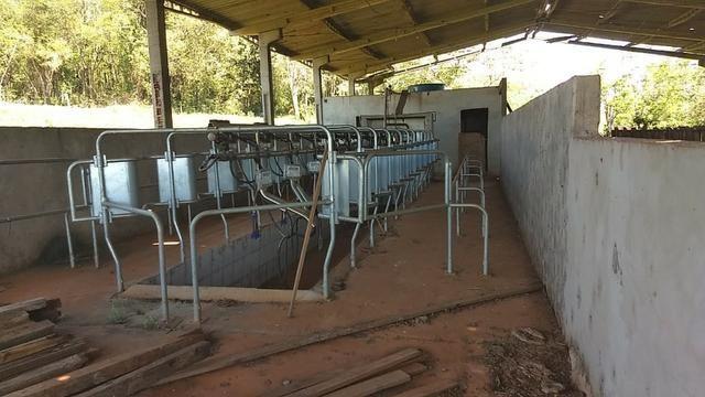 Ordenhadeira de leite - Foto 5