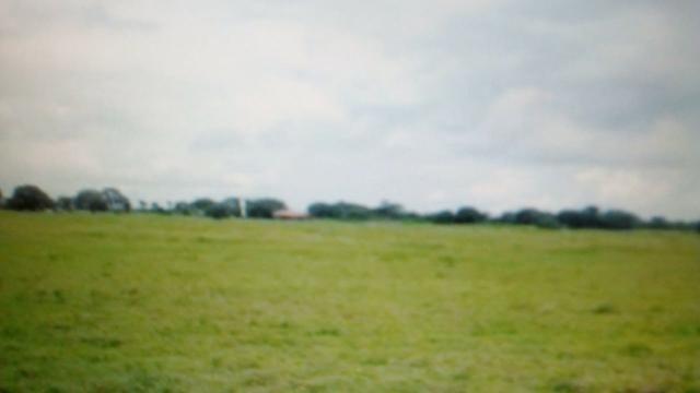 Fazenda 87945 hectares no pantanal Mato-Grossense. - Foto 5