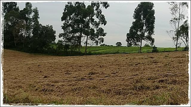 Vendo meu terreno em Ibiúna