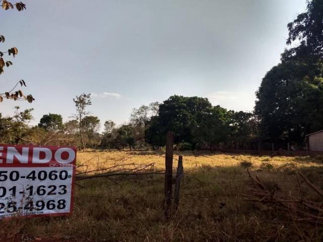 Chácara à venda, 4000 m² por r$ 230.000 - san diego - goianira/go - Foto 4