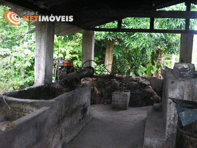 Fazenda com 52,5 Hectares com Fábrica de Azeite de Dendê à Venda na Ilha de Boipeba 402074 - Foto 14