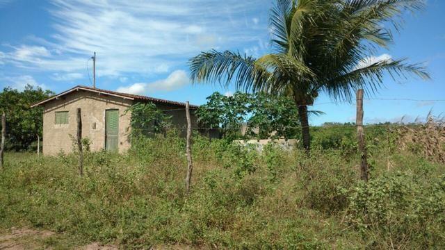 Granja 7 hectares, Casa simples,próximo a RN 064, Cercada - Foto 3
