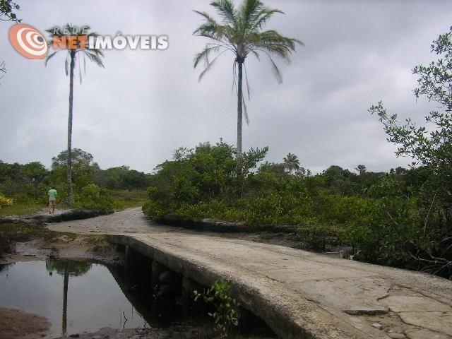 Fazenda com 52,5 Hectares com Fábrica de Azeite de Dendê à Venda na Ilha de Boipeba 402074 - Foto 11