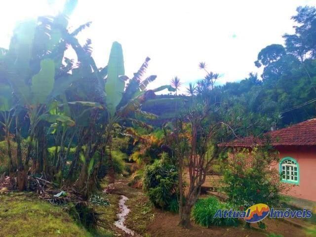 Sítio com excelente área, 3 nascentes, muita água! Próximo ao centro à venda em São José d - Foto 3