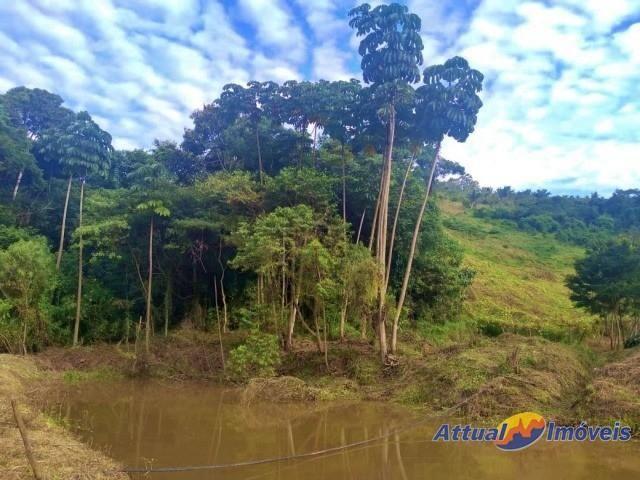 Sítio com excelente área, 3 nascentes, muita água! Próximo ao centro à venda em São José d - Foto 7
