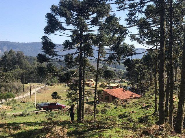 Chácara em Urubici / terrenos em Urubici