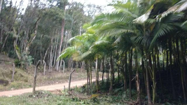 Vendo terreno no gasparinho R$ 42.000,00 - Foto 3