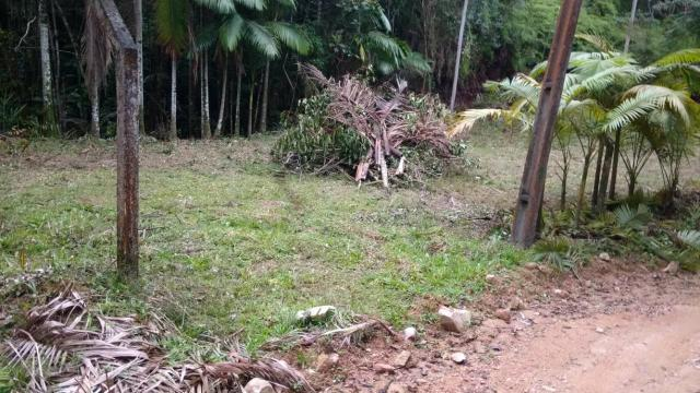 Vendo terreno no gasparinho R$ 42.000,00 - Foto 2