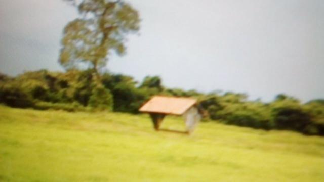 Fazenda 87945 hectares no pantanal Mato-Grossense. - Foto 9