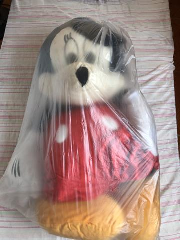 Mickey novo